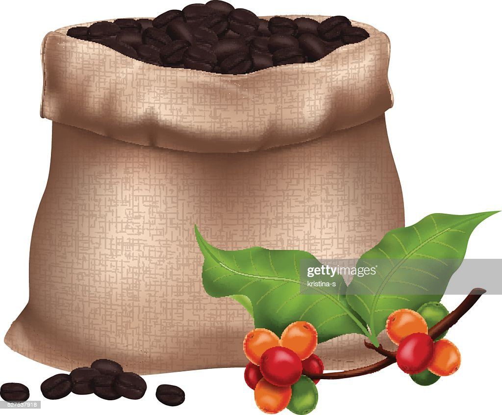Sack of roasted coffee beans and a fresh coffee branch.