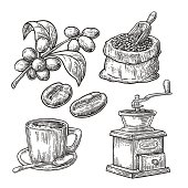Sack with coffee beans wooden scoop beans, cup, branch berry
