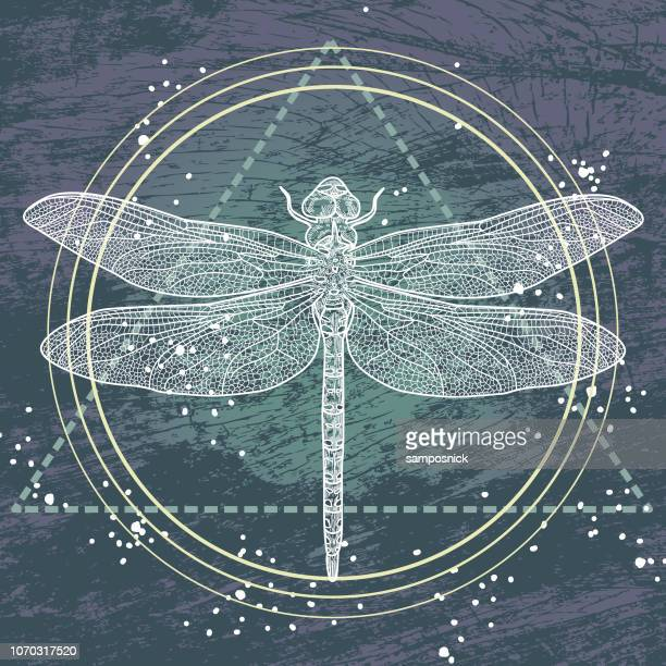 Sacred Geometry Dragonfly