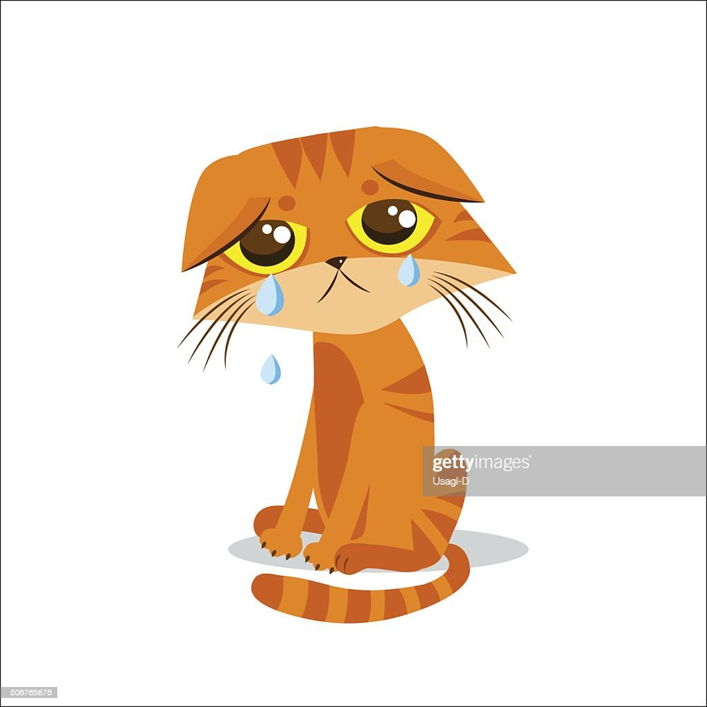 Sad Crying Cat. Cartoon Vector Illustration. Crying Cat Meme.