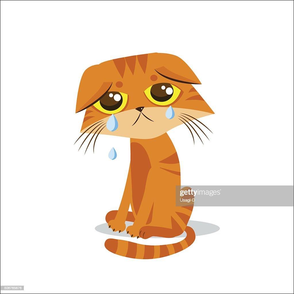 Sad Crying Cat. Cartoon Vector Illustration. Crying Cat Meme.
