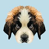 Saint Bernard dog animal low poly design. Triangle vector illustration.