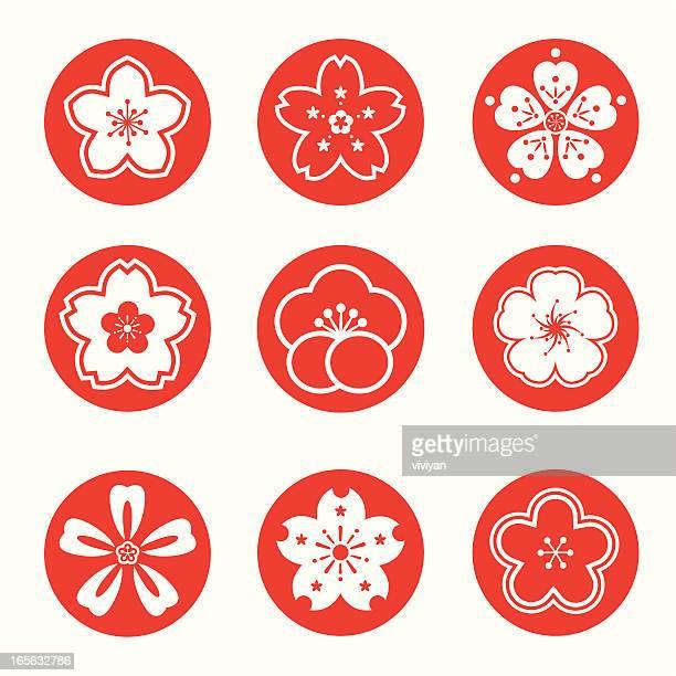 sakura graphic - cherry blossom stock illustrations, clip art, cartoons, & icons