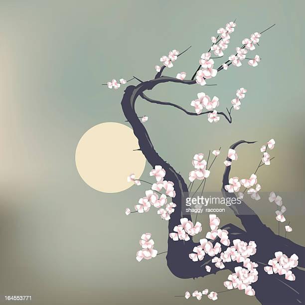 illustrations, cliparts, dessins animés et icônes de sakura en fleurs - cerisier japonais