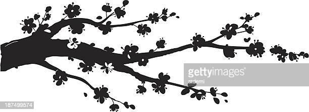 ilustraciones, imágenes clip art, dibujos animados e iconos de stock de sakura silueta - cherry tree