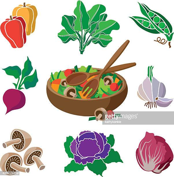 salad and ingredients - chicory stock illustrations, clip art, cartoons, & icons