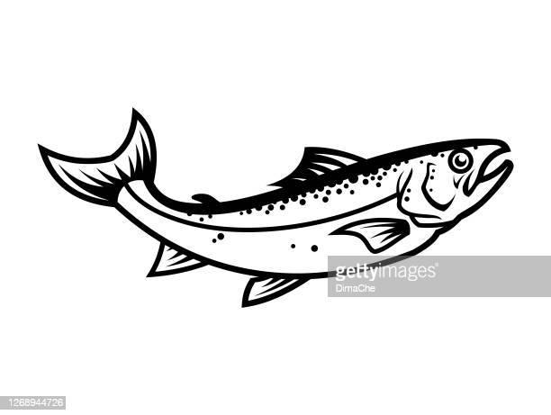 illustrations, cliparts, dessins animés et icônes de silhouette de poisson de saumon - icône de vecteur découpée - saumon