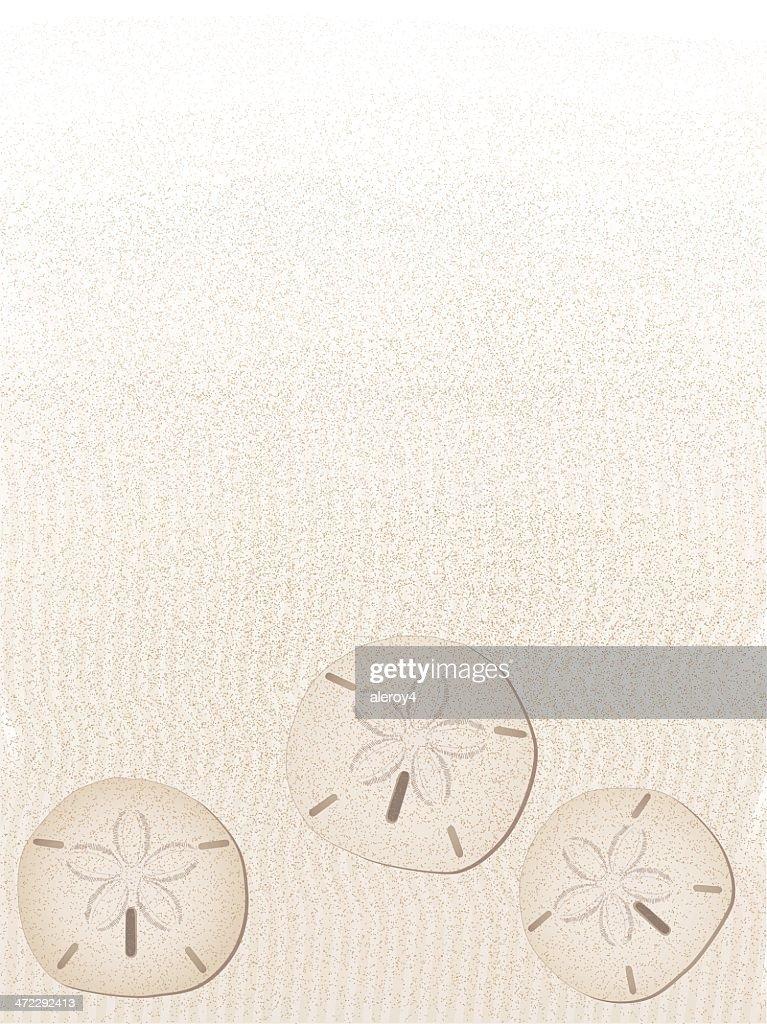 sand dollar background - portrait
