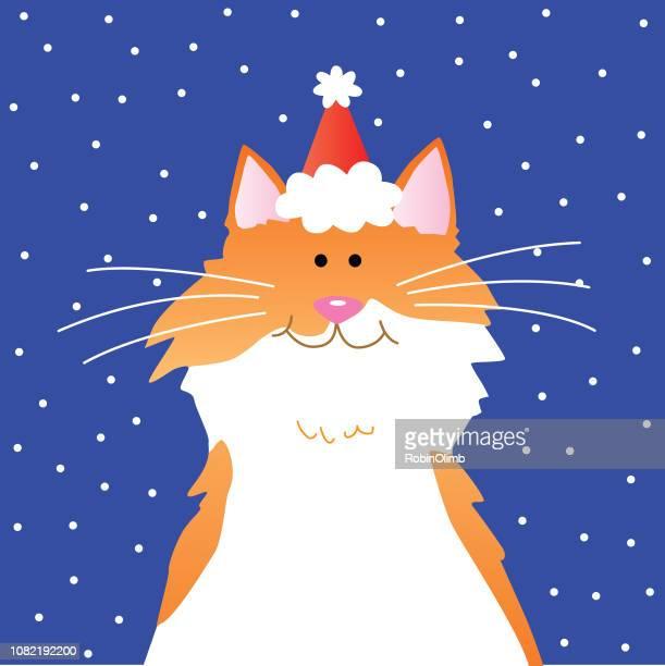 Santa Hat Orange Cat