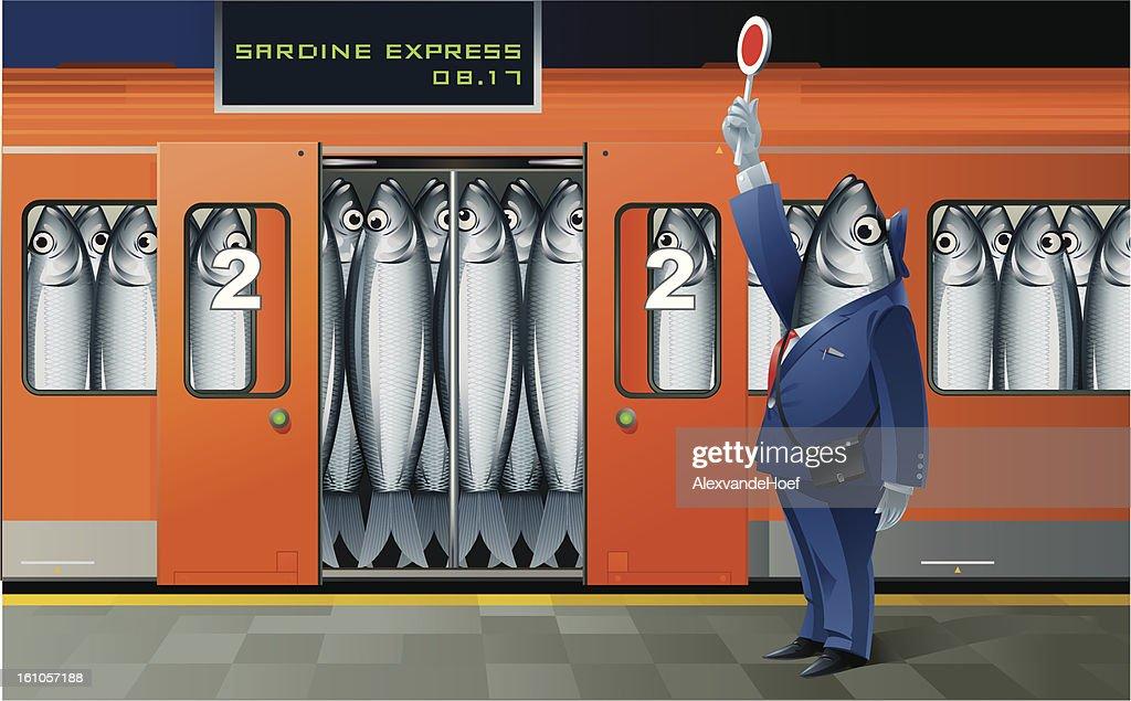 Sardina Express : Arte vectorial
