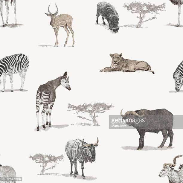 savannah african animals seamless repeat pattern - safari animals stock illustrations