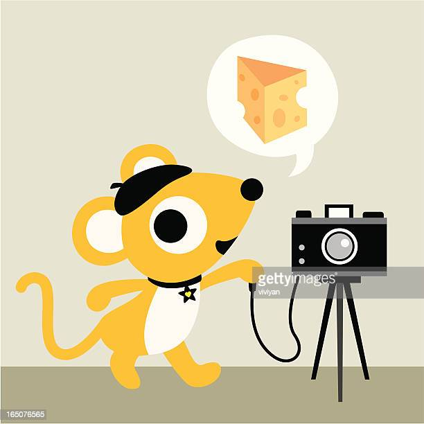 say cheese! - camera tripod stock illustrations, clip art, cartoons, & icons