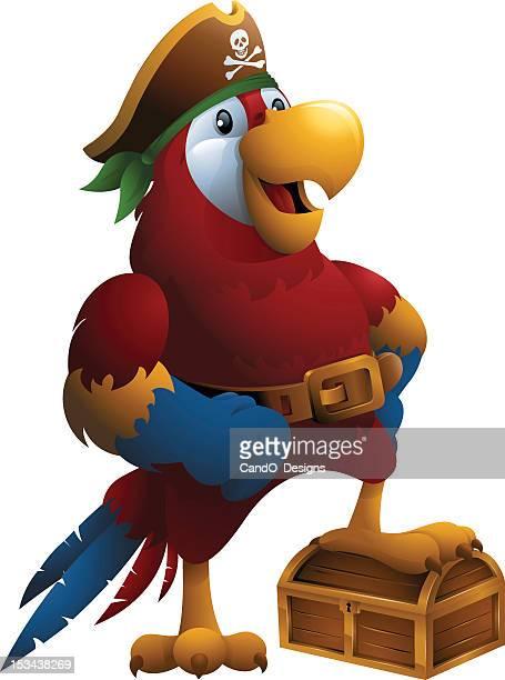 Arara-escarlate: Papagaio de Pirata