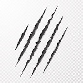 Scary leceration paper surface. Wild animal claws scratch texture. Torn paper edge. Isolated vector illustration