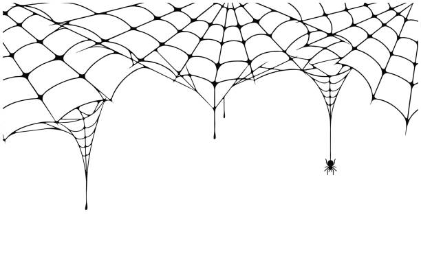 Free cobweb Images, Pictures, and Royalty-Free Stock