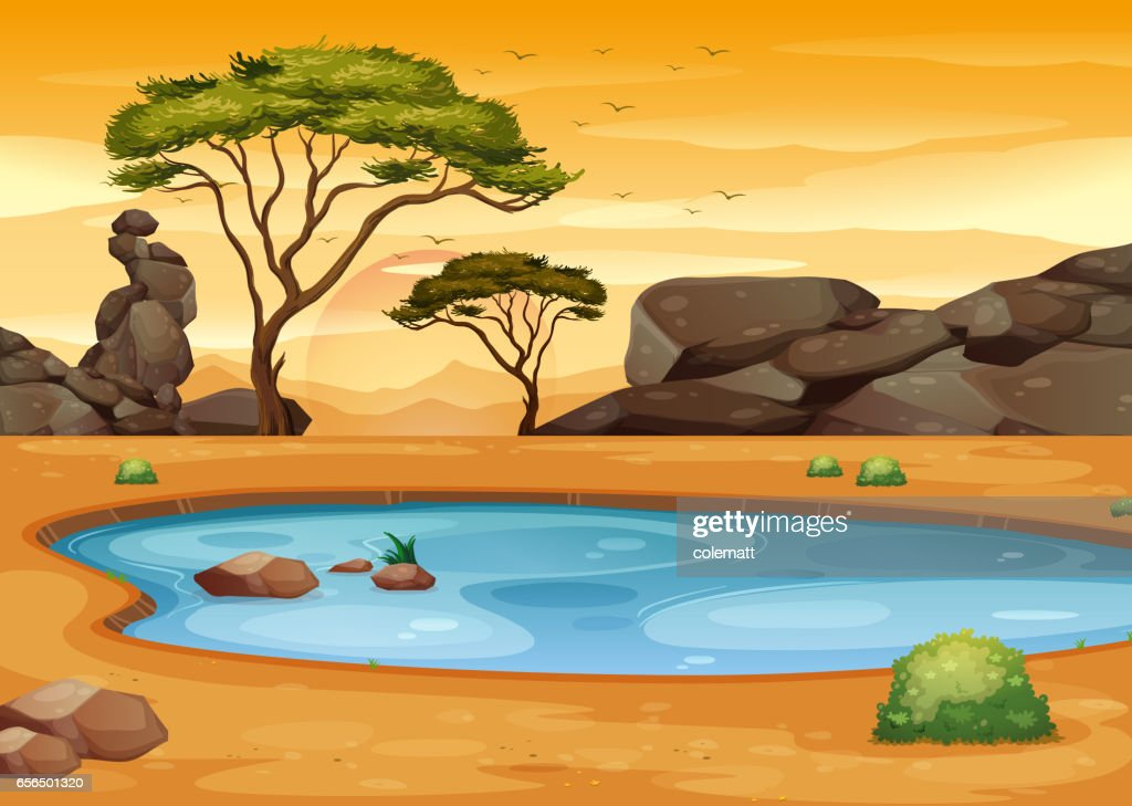 Scene with pond in the desert field