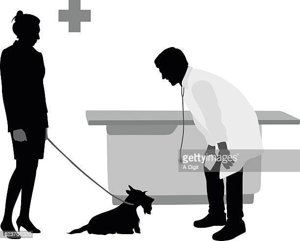 シュナウザーの獣医