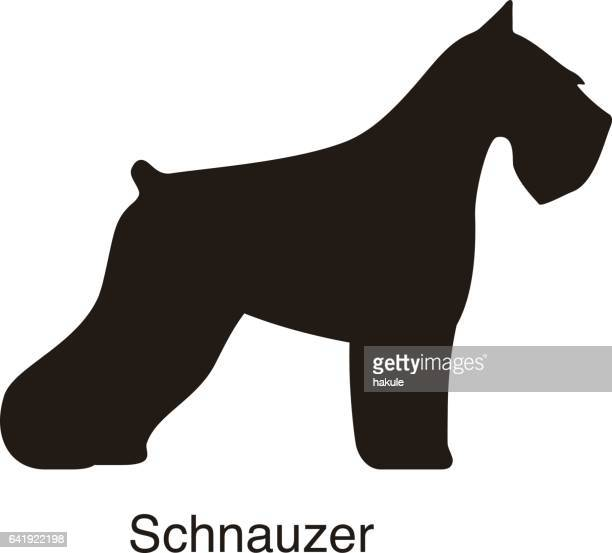 Schnauzer dog silhouette, side view, vector