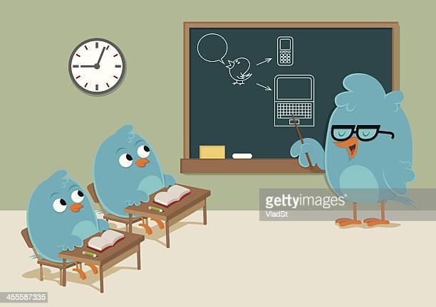 School for bluebirds