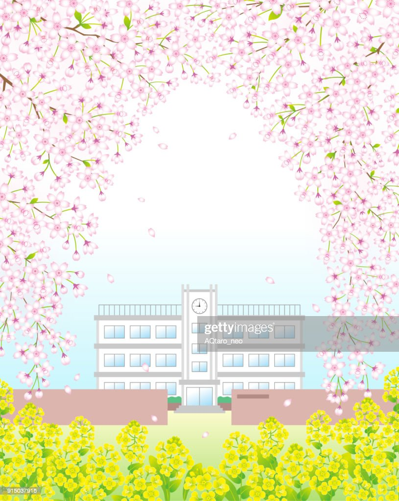 A school under the cherry blossoms arch