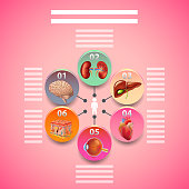 Science infographics with human organs in circles