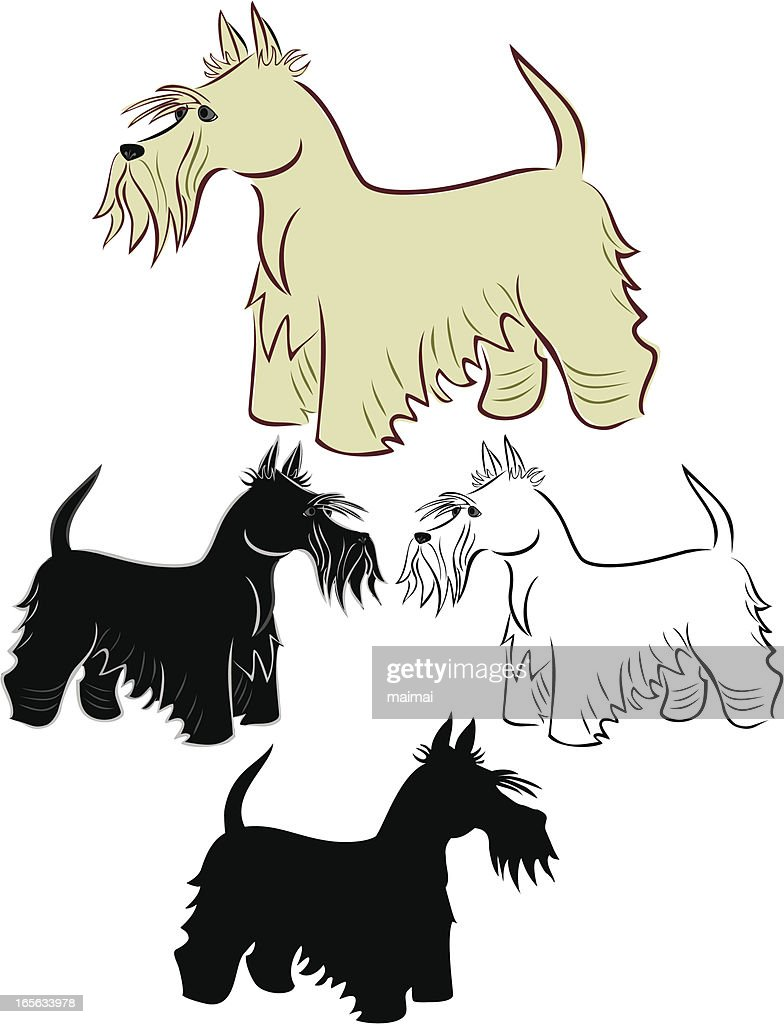Scotch Terriers Standing - Side View