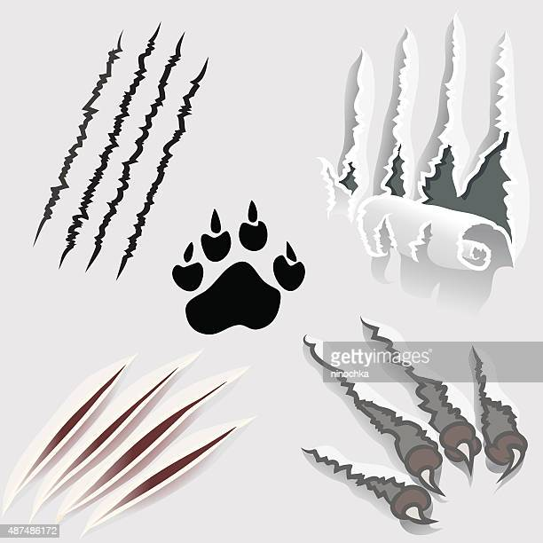 scratched surfaces - claw stock illustrations, clip art, cartoons, & icons