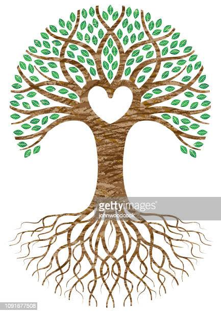 scribbled heart tree roots - creation stock illustrations