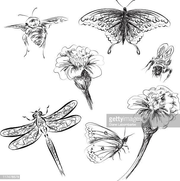 Scribbled Insect and Flowers Collection with Intricate Details