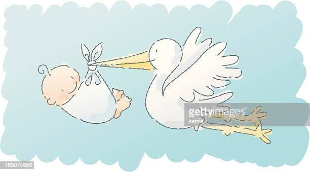 scribbles: stork - childbirth stock illustrations