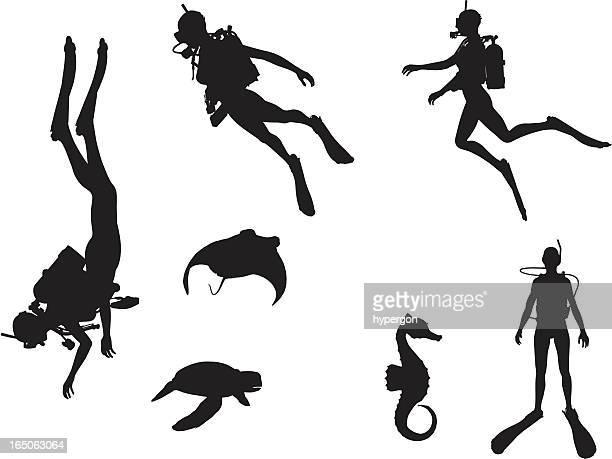 scuba-silhouette kollektion - sporttauchen stock-grafiken, -clipart, -cartoons und -symbole