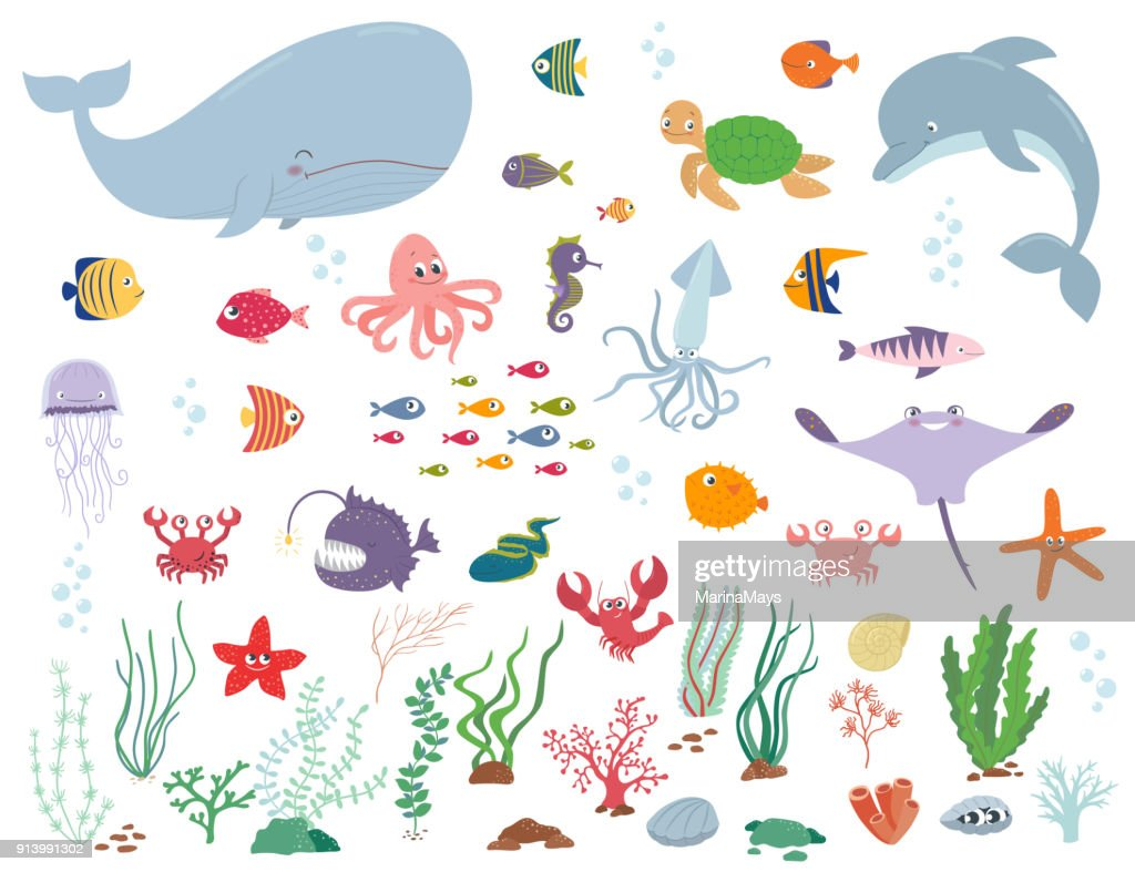 Sea animals and water plants. Cartoon vector illustration