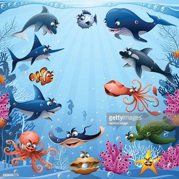 sea animals - killer whale stock illustrations, clip art, cartoons, & icons