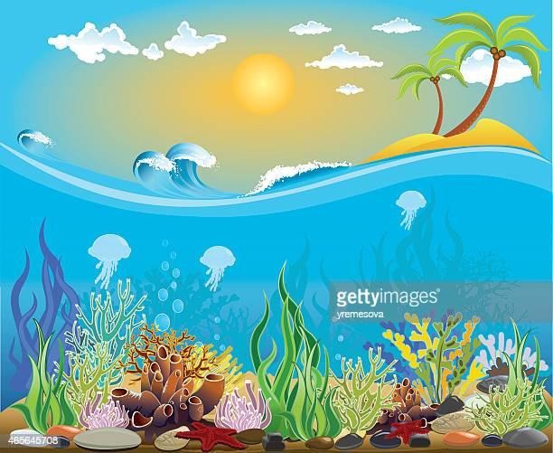 ilustrações, clipart, desenhos animados e ícones de ilustração de fundo do mar - organismo aquático