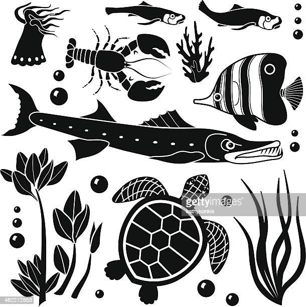 sea creatures design elements - angelfish stock illustrations, clip art, cartoons, & icons