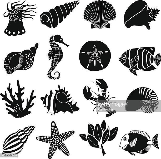 sea creatures icons - acanthuridae stock illustrations, clip art, cartoons, & icons