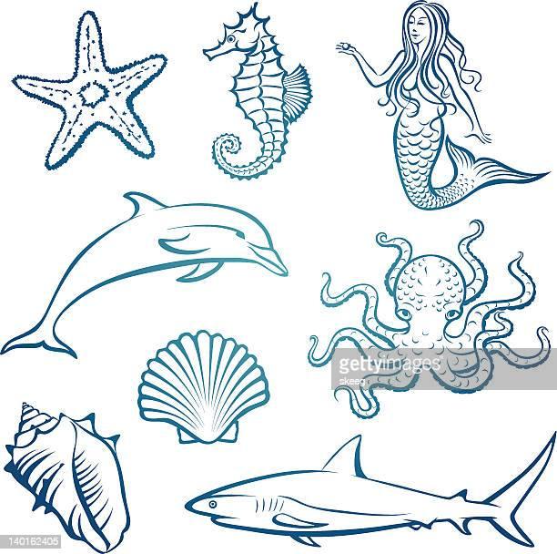 ilustrações de stock, clip art, desenhos animados e ícones de criaturas do mar - cavalo marinho
