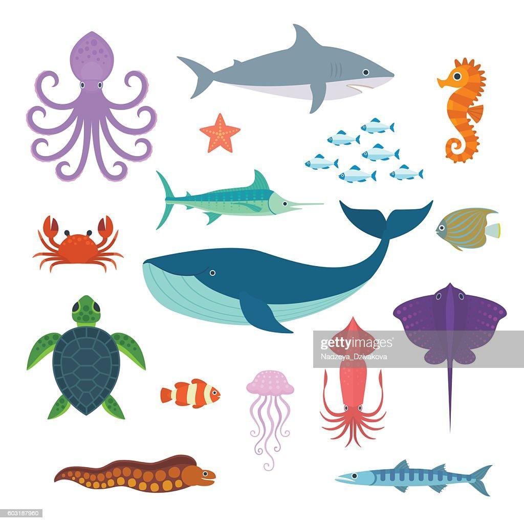 Sea Creatures.