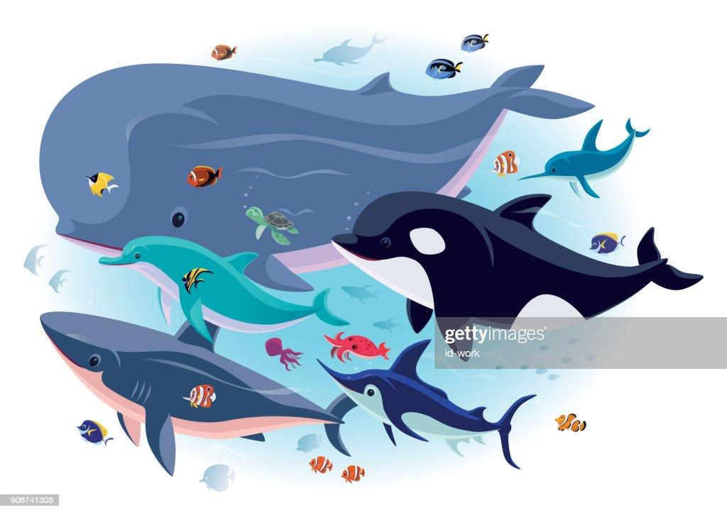 criaturas del mar con peces tropicales : Ilustración de stock