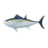 Sea fish. Colorful fish of sea tuna. Fish, eating, menu
