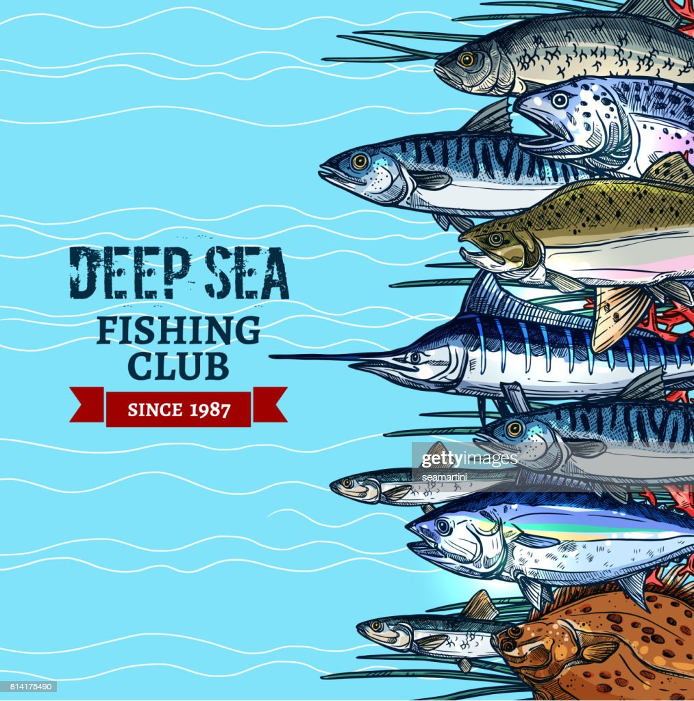 Sea fishing club poster design with fish sketches