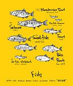 Sea food menu sketch