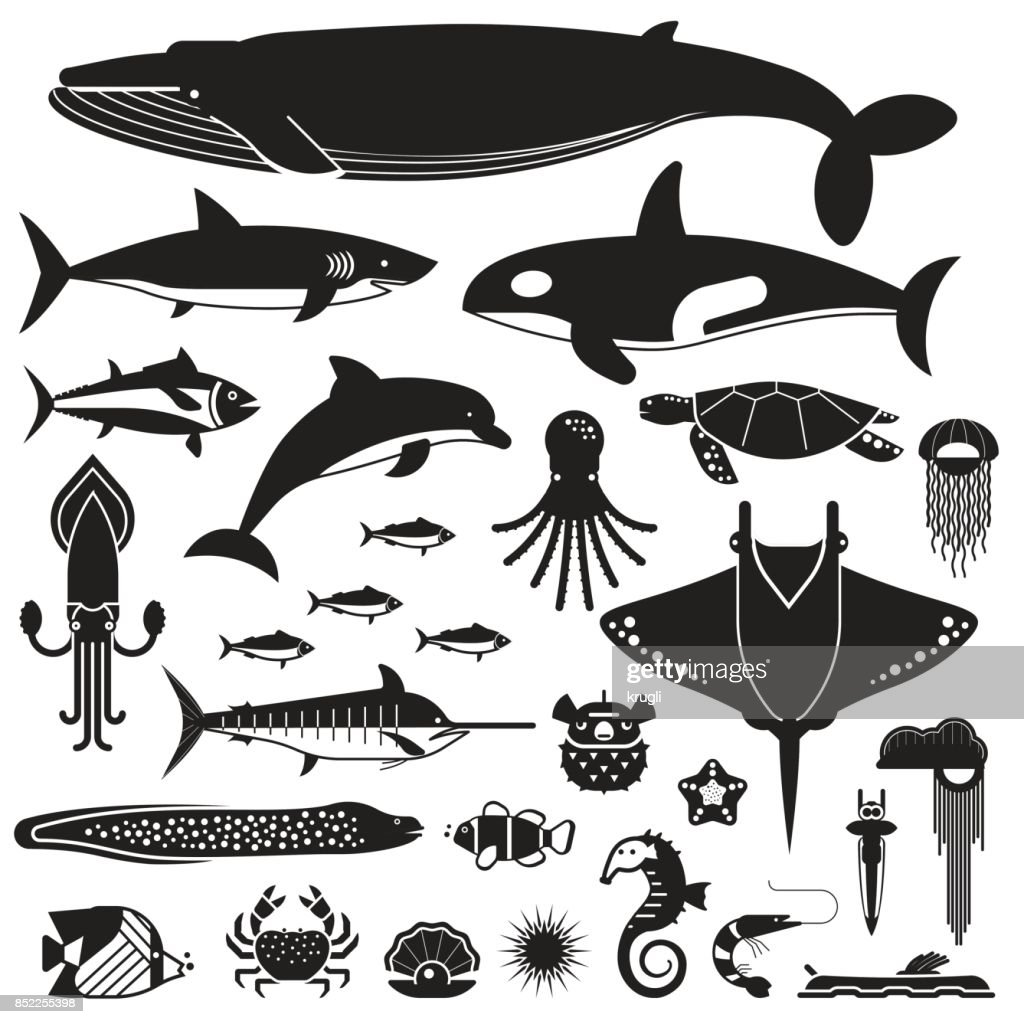 Sea Life and Underwater Animals Icons