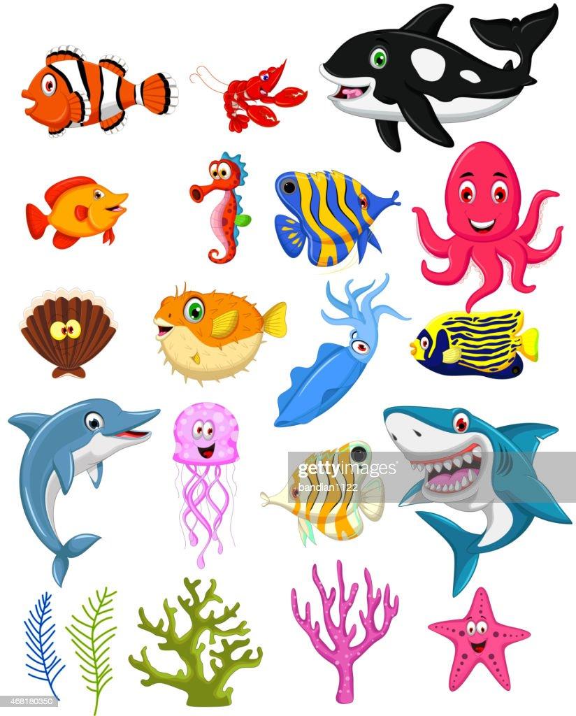sea life cartoon collection