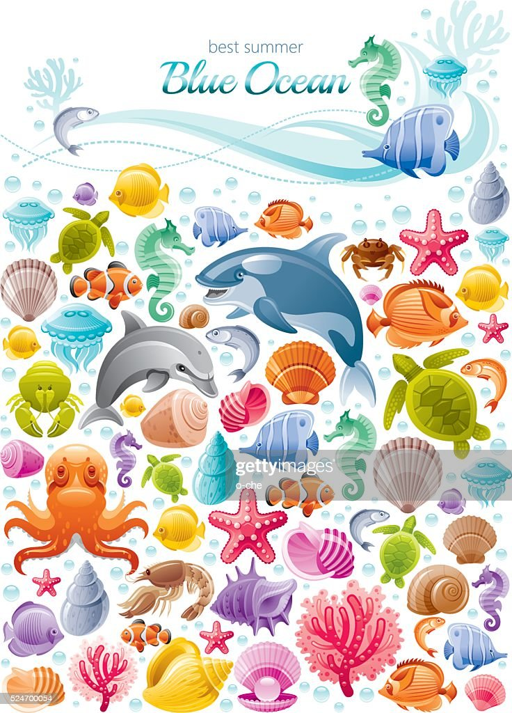 Sea life colorful poster