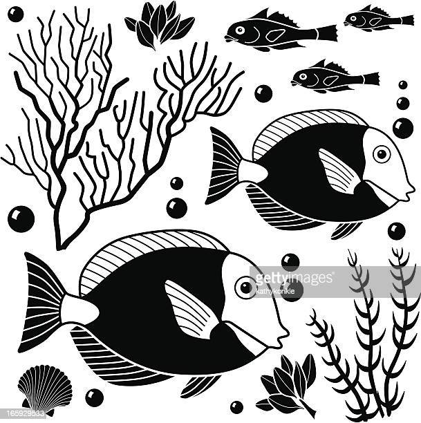 sea life design elements - acanthuridae stock illustrations, clip art, cartoons, & icons