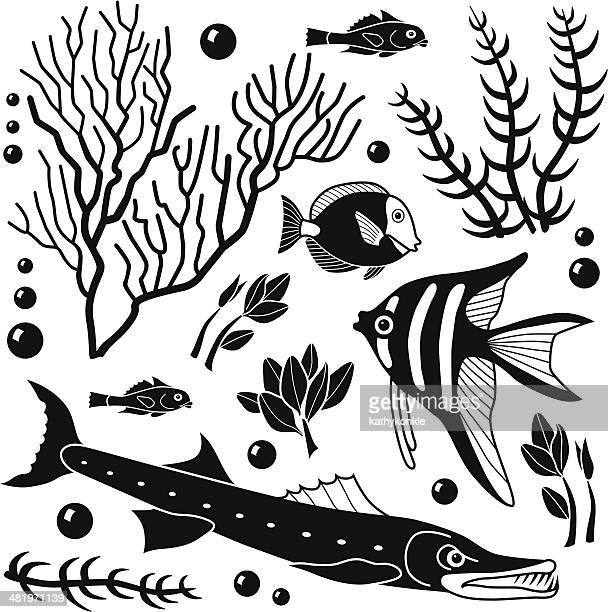 sea life design elements - angelfish stock illustrations, clip art, cartoons, & icons