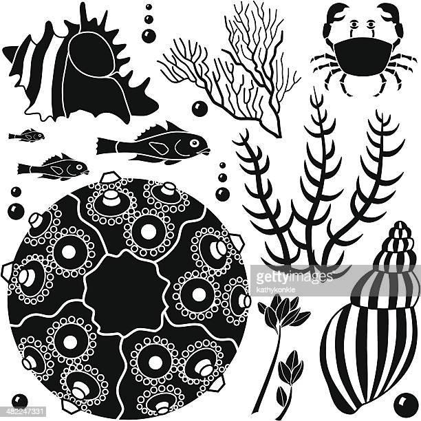 sea life design elements
