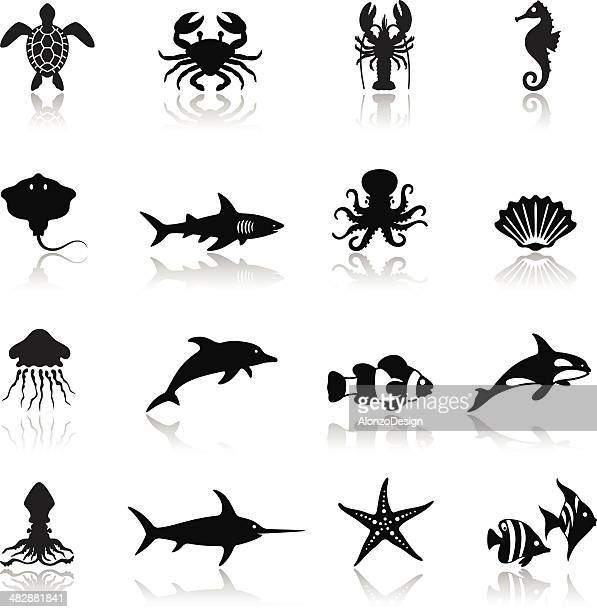 sea life icon set - killer whale stock illustrations, clip art, cartoons, & icons