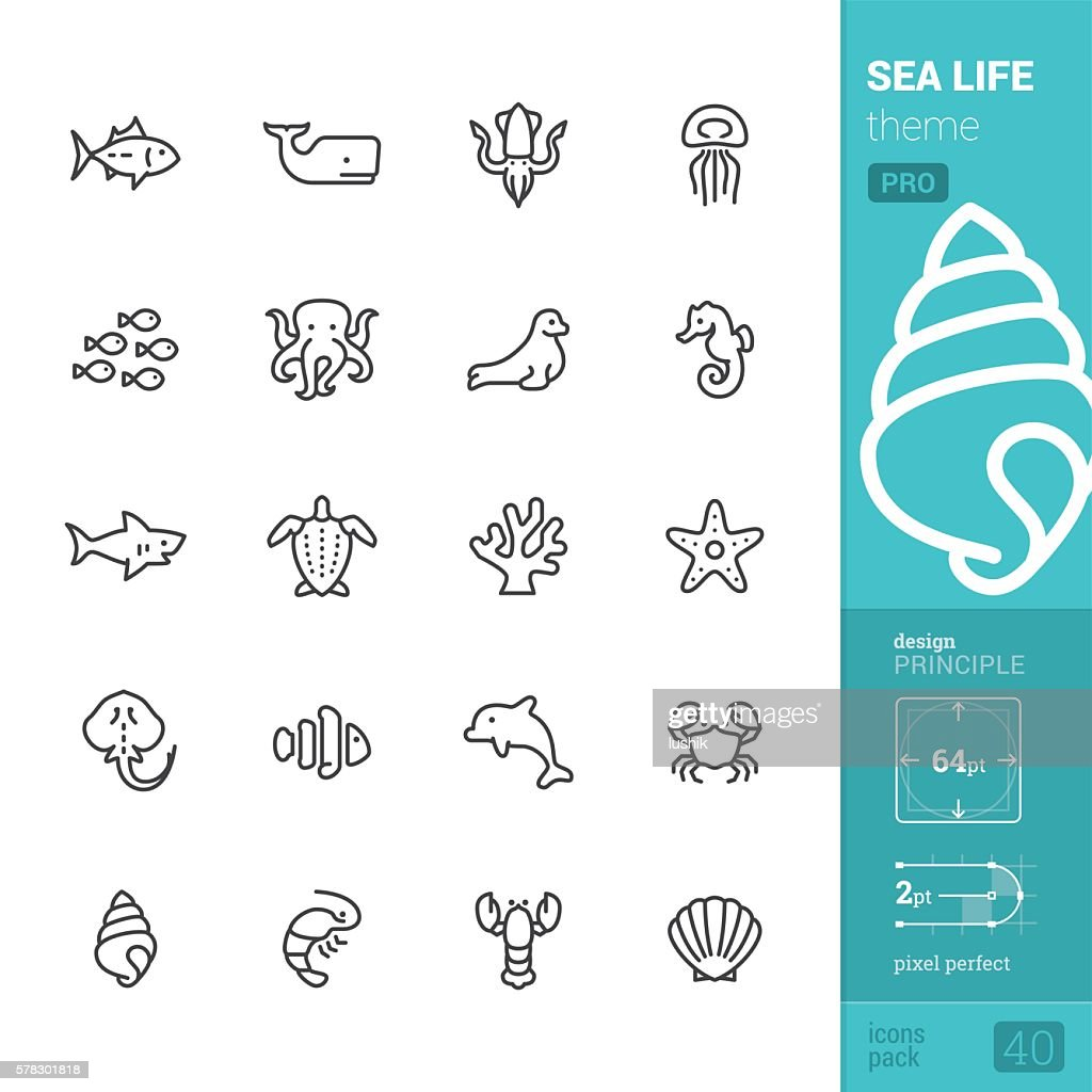 Sea Life theme, outline vector icons - PRO pack : stock illustration